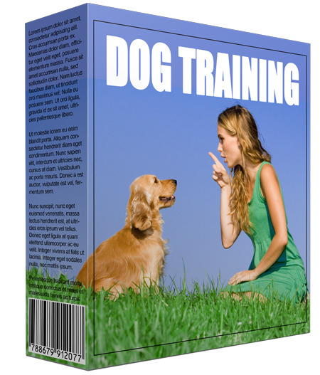 New Dog Training Information Software