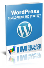 WordPress Report - Development and Strategy